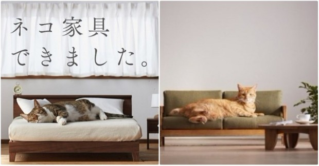 İleri tuşuna basarak minyatür kedi mobilyalarını görebilirsiniz.