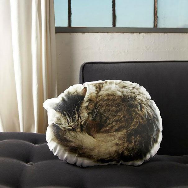 8 . Üç boyutlu kedili yastık, gerçek gibi değil mi?