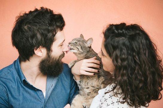 Kedisi olan insanlara karşı olumlu bir puanla başlamak