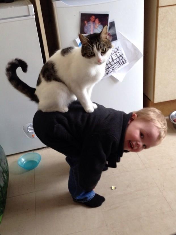 Kedinin ve bebeğin suratlarına baktığımızda tüm dertleri unuttuğumuz bu ufaklıklar