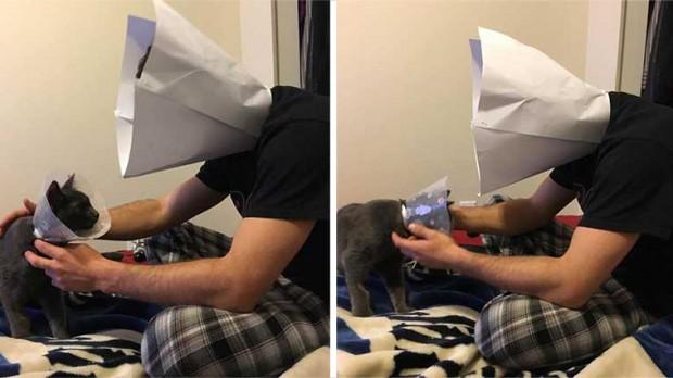 Dikkatlice bu koniyi boynuna taktı ve kedinin yanına oturarak, ona yalnız olmadığını göstermeye çalıştı