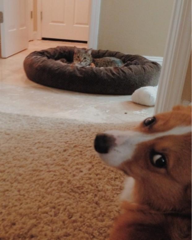 Yatağımı kaptı ama ben ne yaptım ki ona!