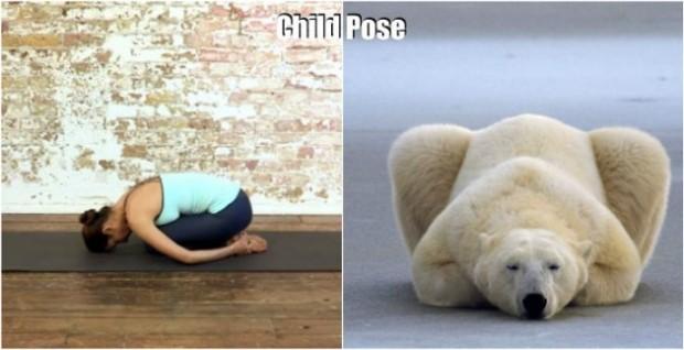 3 . Hadi sizi daha fazla tutmayalım, zira yoga beklemez!