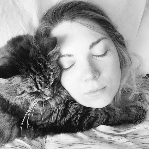 Siz gerçek bir kedi manyağısınız demektir…Hayırlı ve miyavlı olsun efendim.