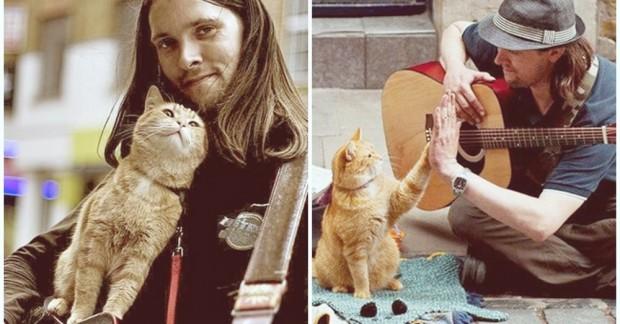 Kıt kanaat geçinen,uyuşturucu bağımlısı bir sokak sanatçısıyken kedi Bob hakkında yazdığı kitapları tüm dünyada milyonlar satan bir yazara dönüştü