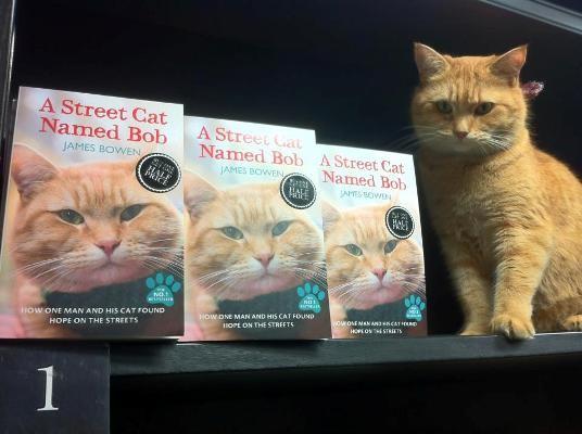ames'in hayata bakış açısını değiştiren Bob'u konu alan kitaplar tüm dünya çapında milyonlar sattı…