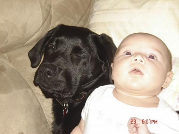 2007 yılında anne adayının kız kardeşi, bebeği olduğunda yavru bir köpeğe yuva olamayacaklarını iddia ediyor.