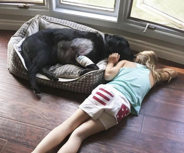 Yorgun ve hasta haliyle uzandığında bile en yakın arkadaşı olan kız onun yanında uzanarak yalnız bırakmıyor.