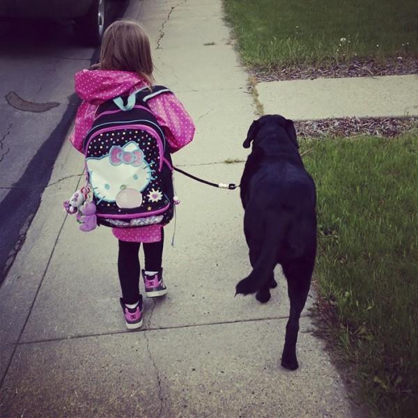 Hatta bu sevimli ikili okula bile birlikte yürüyerek gidiyorlardı.