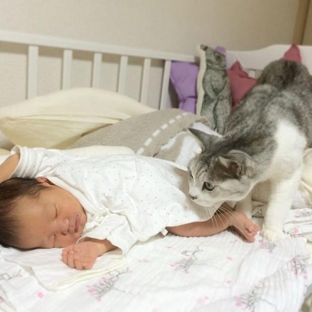 9 ay sonra o gün gelmiş çatmış ve Koo'nun güzeller güzeli kardeşi dünyaya gelmiş..