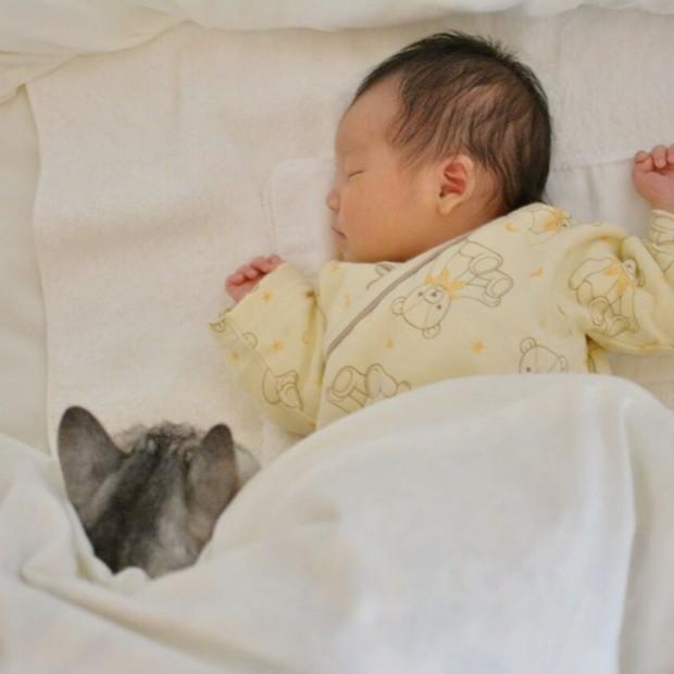 O uyurken de onu izleyen bir çift göz var..