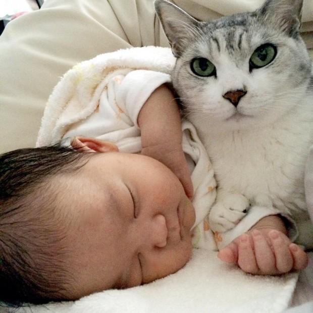 Koo kardeşi uyurken onun ellerini patileriyle tutmaya bayılıyor..