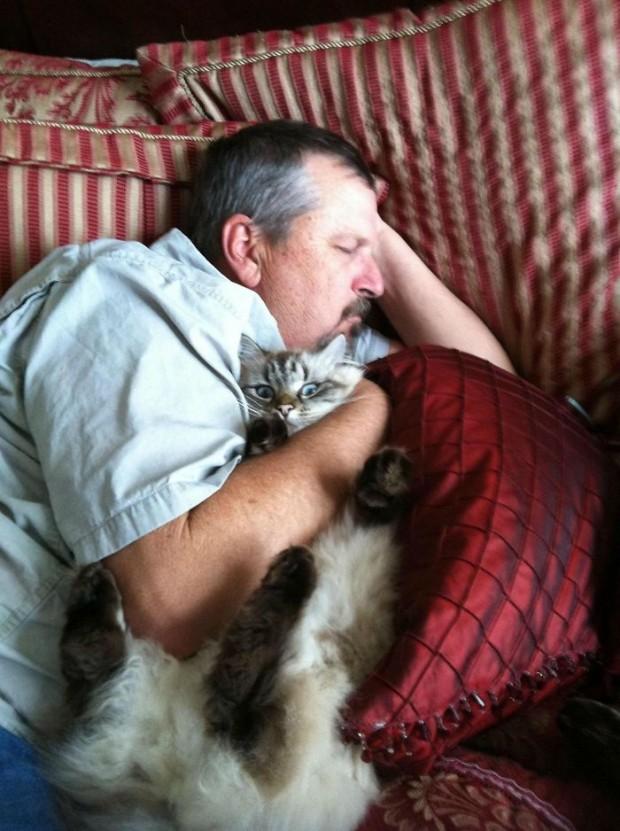 12. Kedi sevmeyen baba, kediyi sevgiden boğacak gibi :) Kediye bir bakın!