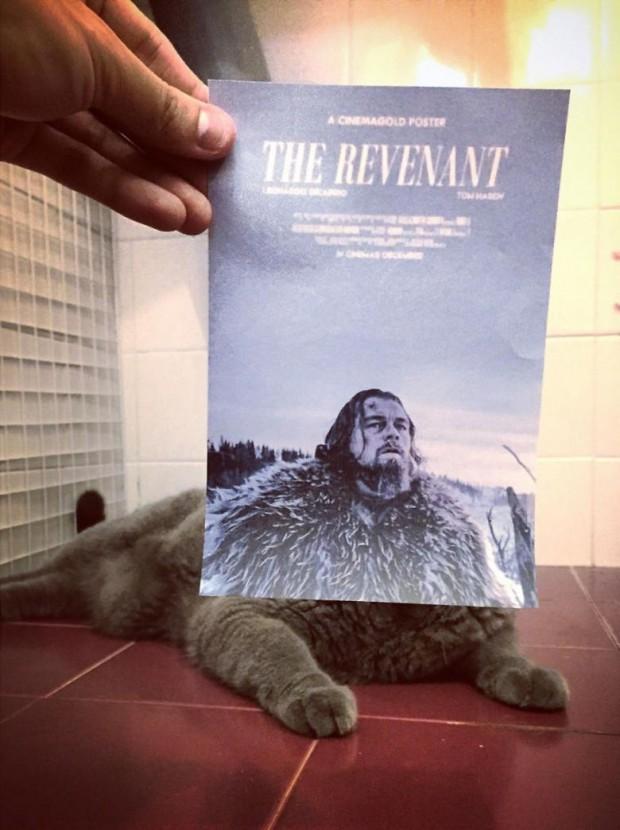 Diriliş (The Revenant)