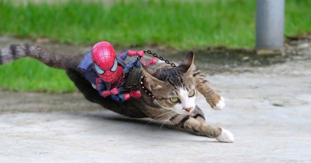 Yakın tarihli bir röportajında, 2002 yılında ilk Örümcek Adam filmini izledikten sonra başta aksiyon figürleri olmak